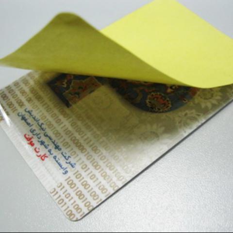 RFID windshield labels