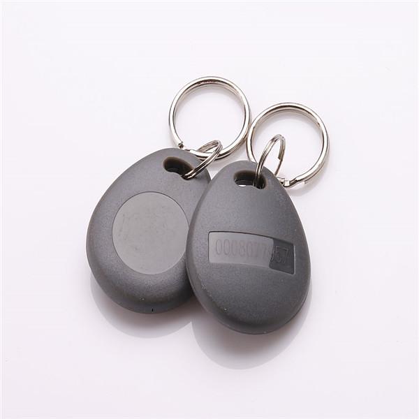 tk4100 keyfob